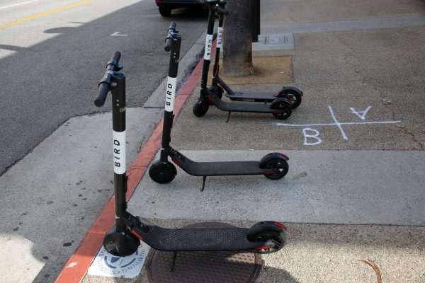 bird-electric-scooter