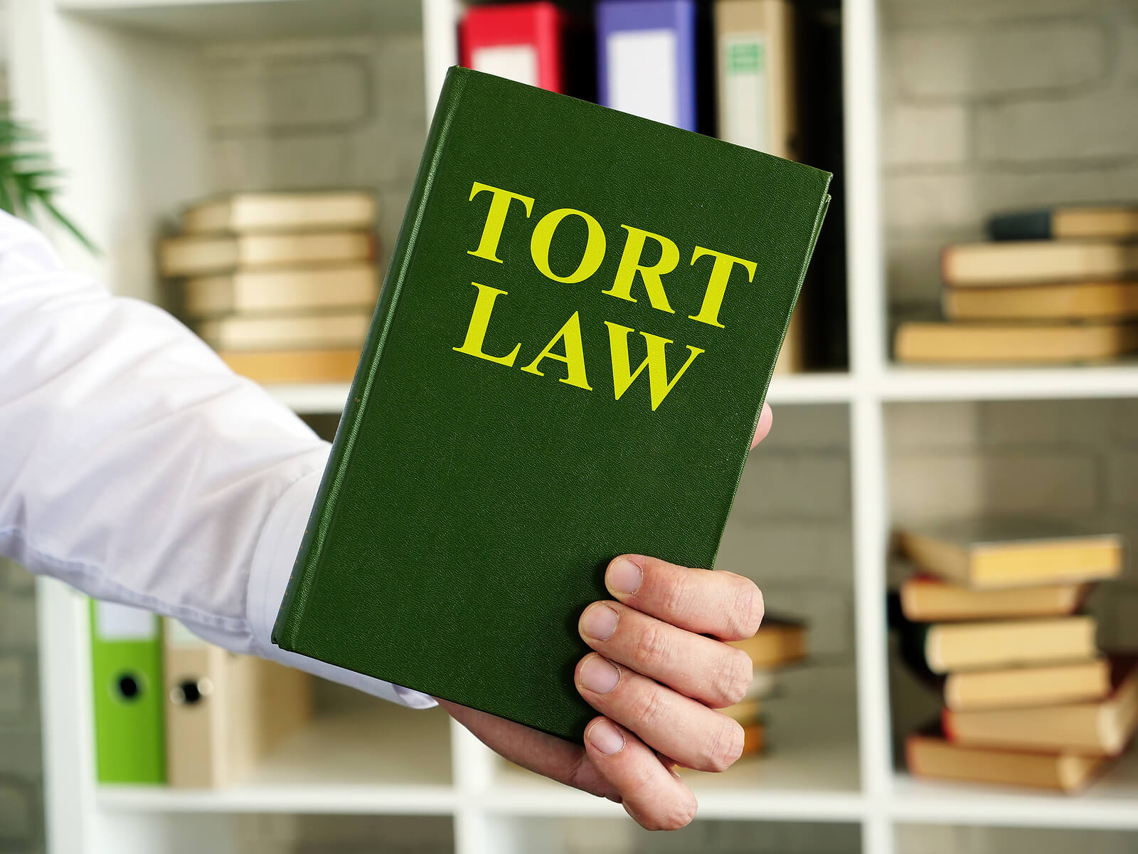 California Tort Law Explained